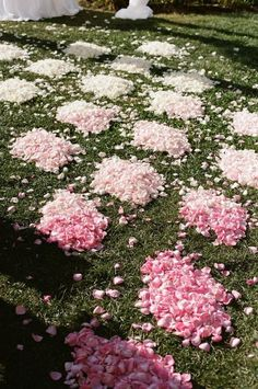 2014 pink ombre petal wedding aisle decor, floral wedding aisle decor idea.
