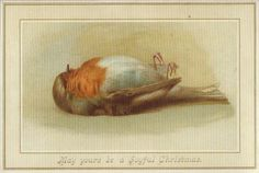 Nothing says merry Christmas like a dead robin | baffling vintage Christmas cards