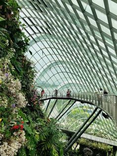 Beating the heat in Singapore: Cool things to do Visit Singapore, Singapore Travel, Singapore Outfit, Bali, Singapore Botanic Gardens, Street Mural, Gardens By The Bay, Instagram Worthy, What A Wonderful World