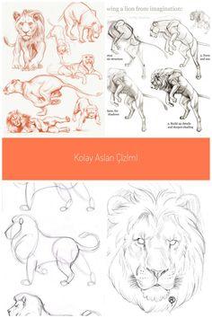 Lion sketch on Behance #drawing lion Lion sketch