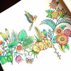 #Repost @lostoceancolors Bom dia para a Sexta-feira! Encantada com a #delicadeza das #cores... colorir para se divertir e se encantar!!! #Pintura #linda @cats_colouring _______________________________________________ Use #lostoceancolors e compartilhe seus desenhos ou via Direct! Siga os IGs: @lostoceancolors