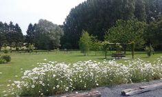 Jardin des Chambres d'hôtes à vendre près du Quesnoy dans le Nord