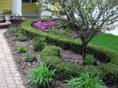 Cheap Landscaping Ideas For Back Yard | Pictures Front Yard Landscaping Ideas A