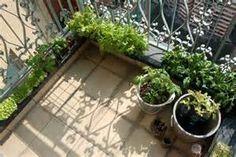 Balcony vegetable Gardens - Bing Images