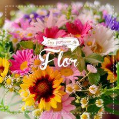 """Publicação para Facebook para a página da Verde Mais, desenvolvido junto a NNcorp. """"Flores deixam a sua vida e a sua casa muito mais belas. Aqui no Verde Mais você encontra o segredo de um ambiente belo e perfumado #flor #perfume #verdemais"""""""
