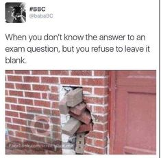 At least Salute the effort. Exams Memes, Exams Funny, Funny School Jokes, Some Funny Jokes, Crazy Funny Memes, Really Funny Memes, School Memes, Wtf Funny, Funny Facts