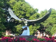 Established in 1947 as Wilmington College, UNCW continues to expand every year.  A sprawling campus hidden in the middle of town, it brings students from all over the United States and the world.