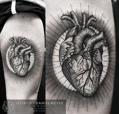 Anatomical Heartby Daniel Meyer via LEITBILD  www.dasleitbild.com www.facebook.com/dasleitbild www.instagram.com/dasleitbild