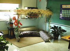 Reading Hut! This Blog has ideas for an entire classroom based on a rainforest/jungle theme! Love it!