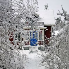 Red White & Blue by Steffe, via Flickr  A small red cottage with a blue door. Seen on a winter promenade through Lida, Sweden