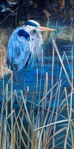 Northern Reflections Teresa Thompson Oakville Gray Jay, Canadian Nature, River Otter, Fine Art Photography, Reflection, To Go, Wildlife, Landscape, Canvas