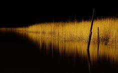 Inkoo | Flickr - Photo Sharing!
