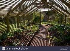 Wooden slated plant shade house garden, England Stock Photo