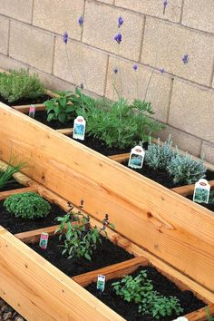 DIY Garden Bed Ideas is part of Tiered garden Boxes - Depending upon your space, style, and needs, I have rounded up some DIY Garden Bed Ideas that are sure to help inspire the design that is best for you