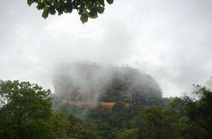 #valentin #pigeau #MMI #limoges #design #photographie #Sri #Lanka #picture #singe #rocher #du #lion #king #rock