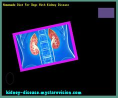 Homemade Diet For Dogs With Kidney Disease 115324 - Start Healing Your Kidneys Today!