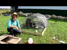 CHICKEN COOP FOR $50 AND 1 HOUR TO BUILD - YouTube