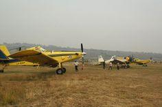Incendios forestales: Ya llegaron a la provincia los nuevos aviones http://www.ambitosur.com.ar/incendios-forestales-ya-llegaron-a-la-provincia-los-nuevos-aviones/ Hay 6 aviones disponibles en Cholila, a la espera de que las condiciones de visibilidad permitan su operación. A última hora llega el helicóptero solicitado a Neuquén. Durante todo el día, trabajaron para controlar el incendio 120 personas y 14 autobombas. Se realizan fajas cortafuegos en la zona del Cañadón