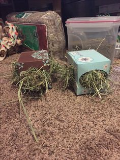 Fun and easy hay holder for your guinea pigs to play with
