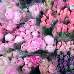 Peonies & tulips two of my favorite flowers Amazing Flowers, Love Flowers, My Flower, Peonies, Tulips, Hydrangea, Special Day, Floral Arrangements, Dream Wedding