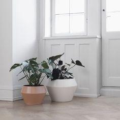 Beton Optik Schöner Wohnen beton-optik – schÖner wohnen-farbe | einrichtungsideen | pinterest