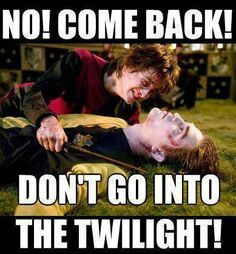 Don't go into the twilight! :D Harry Potter humor