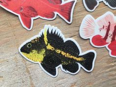 240 Best Rockfish Sculpins Lingcods images in 2019