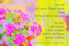 Für Dich soll' s bunte Blumen regnen ... http://www.farben-reich.com/