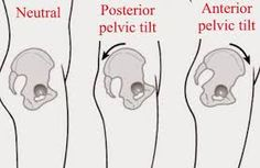 Resultado de imagem para psoas muscle LLD
