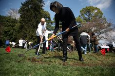 Green Thumbs Hope to Lead the Trumps Down the Garden Path