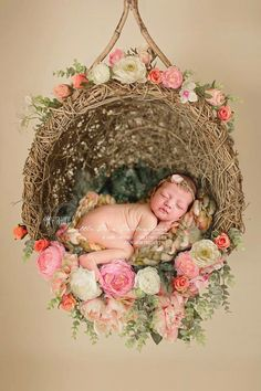 I need this prop! Newborn photography