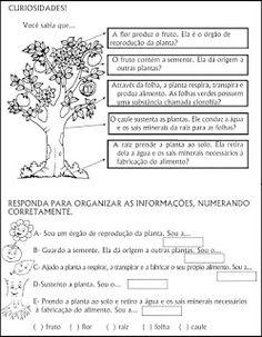 180 ATIVIDADES DE CIÊNCIAS EXERCÍCIOS ENS FUNDAMENTAL      .