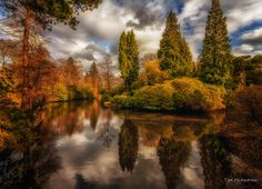 Reflections by Tim McAndrew on 500px