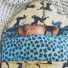 Cutest thing in the sleeping nest. Thanks @urbangrazr for  #gots #mini rodini