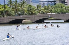 Paddle Down the Ala Wai Used to ALWAYS see this very scene everytime ME, My MoM & DaD went for our walk along the Ala Wai Canal...GOOD MEMORIES
