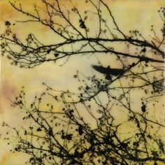 """Shiny Objects"" encaustic painting with photo transfer of crows in branch with berries; birds, yellow, gold, by Jeff League"