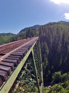 Mason County bridges: Vance Creek Bridge & High Steel Bridge. Shelton, Washington