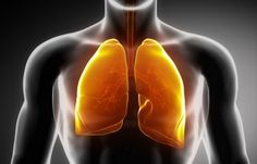 Best Natural Ways For Cleaning Your Lungs Of Nicotine And Tar