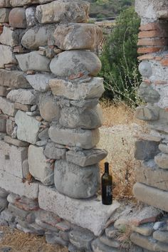 wine - Calabria