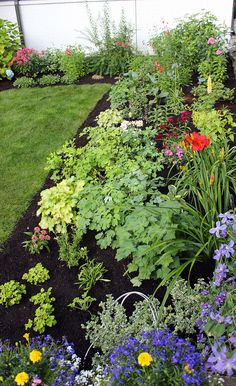 Are you embarrassed by your yard? See how this woman made her neighbors take another look: