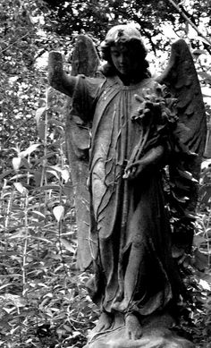 Abney Park Cemetery by icb2011, via Flickr