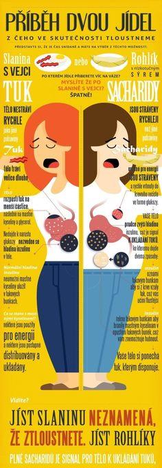 Tuky a sacharidy, po čem se více tloustne?
