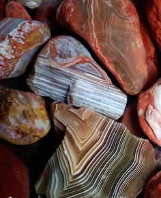 Awesome photo from Lonesome Creek. Lake Superior Agates, Rocks And Minerals, Fossils, Fish, Gemstones, Crystals, Awesome, Stones, Gems