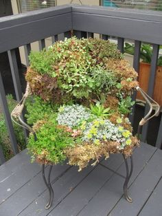 A Mossy Seat. What a great way to add a little whimsy & reclaim a worn out piece of furniture.