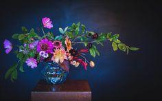 Scottish Flowers, Second Weddings, Flower Farm, Cut Flowers, Daisy, Bouquet, Create, Floral, Plants