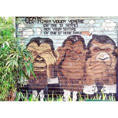 Instagram media iskonno_ru - regram @pierpy_man  Le tre scimmiette  Mizaru Kikazaru Iwazaru  See no evil, hear no evil, speak no evil  #streetart #murales #muralesart #art #letrescimmiette #nonvedo #nonsento #nonparlo #mizaru #kikazaru ##iwazaru #proverbi  #proverbs #milano #milan #italia #italy #picoftheday #bestoftheday #instadaily