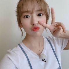 Yu Jin, Love U So Much, Japanese Girl Group, Meme Faces, Kpop Girl Groups, The Wiz, True Beauty, Shit Happens, Profile Pics