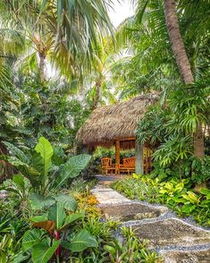 Its Friday! Who else wants to relax with a cocktail in this tiki hut?