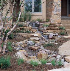 Front-yard-landscape (120)