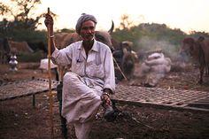 Head of family Gujarat nomad Travel photo India